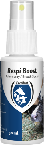 Respi Boost (Breath Spray)
