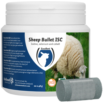 Sheep Bullet ISC for Ewes